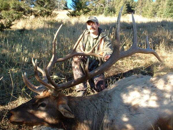 Q Creek Elk Hunting Page 2/3 - Elk Hunting